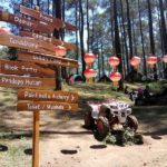 Menikmati 4 Tempat Liburan Favorit di Lembang dan Bandung